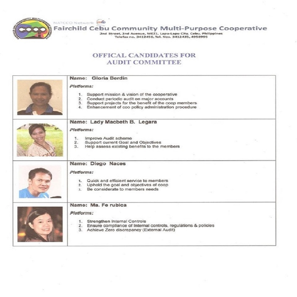 Official Candidates for Audit Committee